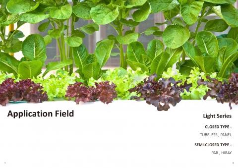 設施植物補光系列 4